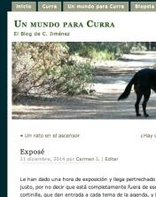 foto blog unmundoparacurra